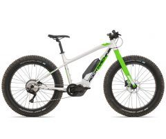 Rock Machine Avalanche e50-26, 2021, efatbike