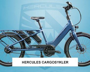 Hercules Rob Family cargosykkel